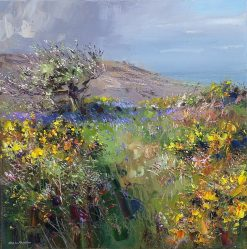 O197A Apple Blossom, Trevelgan Hill, near St. Ives 16x16