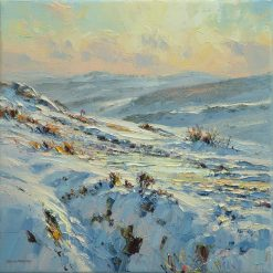 P122A Late Afternoon Light, Burbage Moor 12x12
