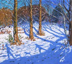 "November snow,Allestree Park.32x36"""