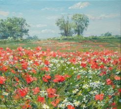 Poppies and Mayweed, Ednaston 18x20